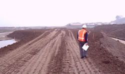 Hamilton Wetlands Restoration Project