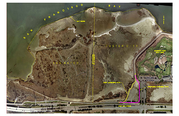 Foster City Levee Wave Runup Analysis