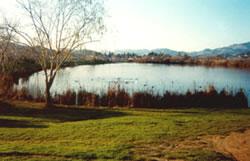 Scottsdale Pond Park Improvements