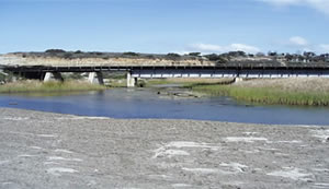 San Onofre Lagoon Estuary Enhancement Report